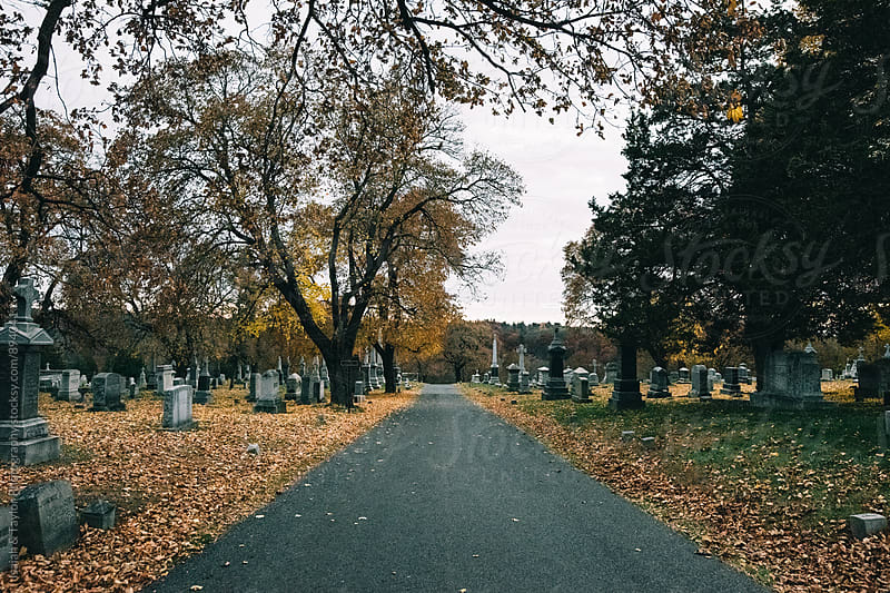 Road in Cemetary by Isaiah & Taylor Photography for Stocksy United