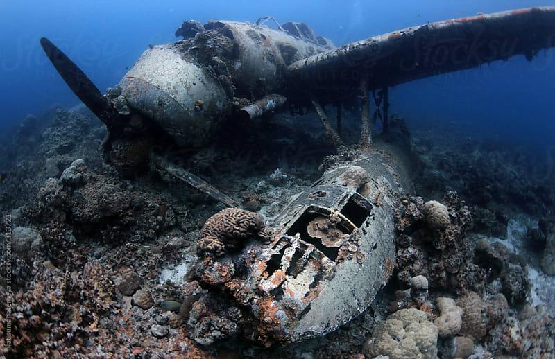 WW II  Airplane wreck by Nat sumanatemeya for Stocksy United
