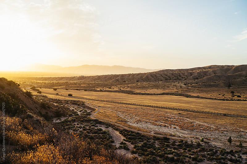SongDog Ranch by Jorge Quinteros for Stocksy United