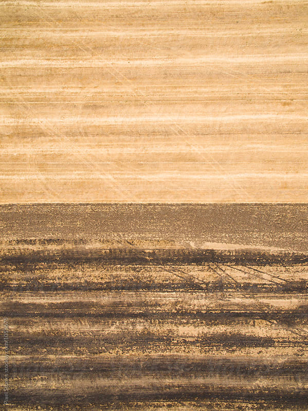 Harvested and burned stubble farmland by Pixel Stories for Stocksy United