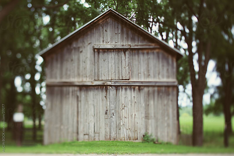 The Barn by ALICIA BOCK for Stocksy United