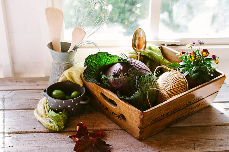 Autumn produce in a sunny kitchen by Helen Rushbrook for Stocksy United