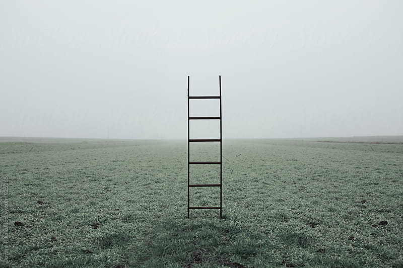 Ladders on the field by Jovana Rikalo for Stocksy United