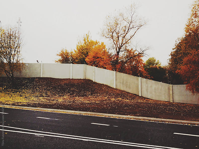 A wall and golden leaves by Tõnu Tunnel for Stocksy United