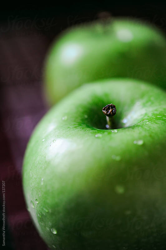 granny smith 2 by Samantha Wesselhoft for Stocksy United