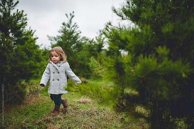 through the christmas trees by Courtney Rust for Stocksy United