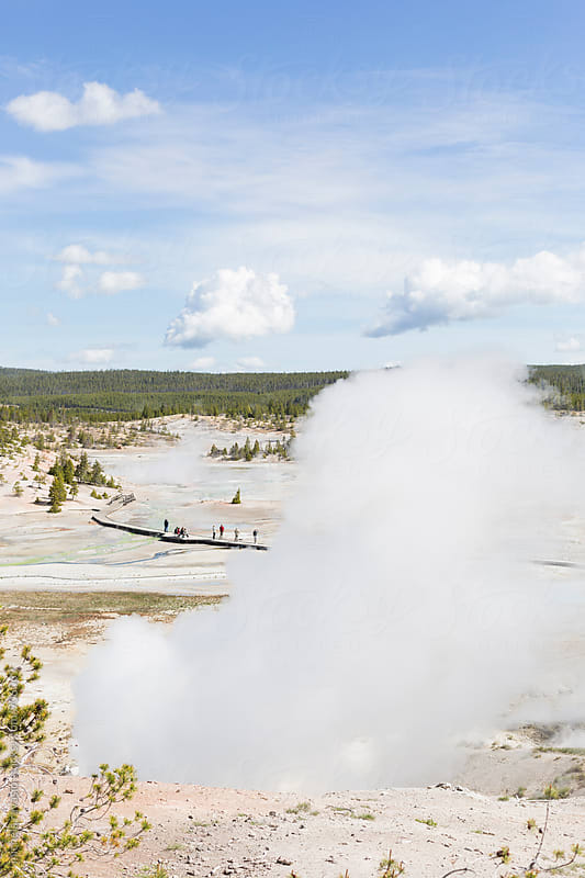 Steams in Norris Geyser Basin, Yellowstone National Park by michela ravasio for Stocksy United