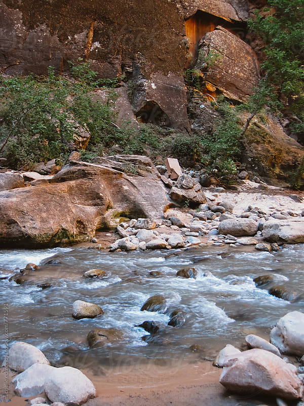 Hiking the Narrows in Zion National Park by michelle edmonds for Stocksy United