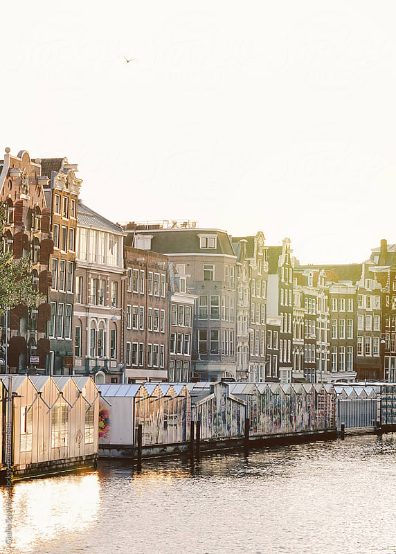 Amsterdam canal at sunshine by Giulia Squillace for Stocksy United