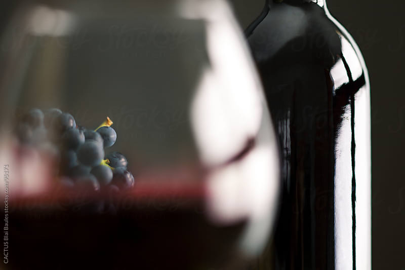 Wine and grapes  by CACTUS Blai Baules for Stocksy United