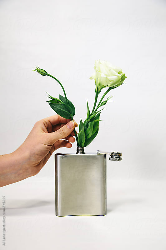 Lisianthus in a flask by Ali Lanenga for Stocksy United