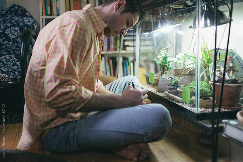 Man Writes and Sticks Labels on Terrarium to Identify Plants and Seedlings Inside by Joselito Briones for Stocksy United