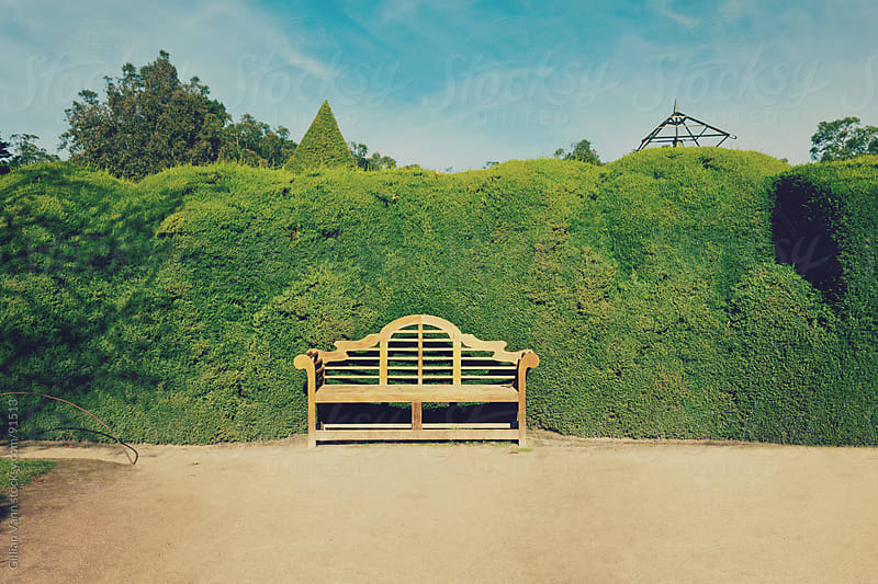 garden bench seat by Gillian Vann for Stocksy United