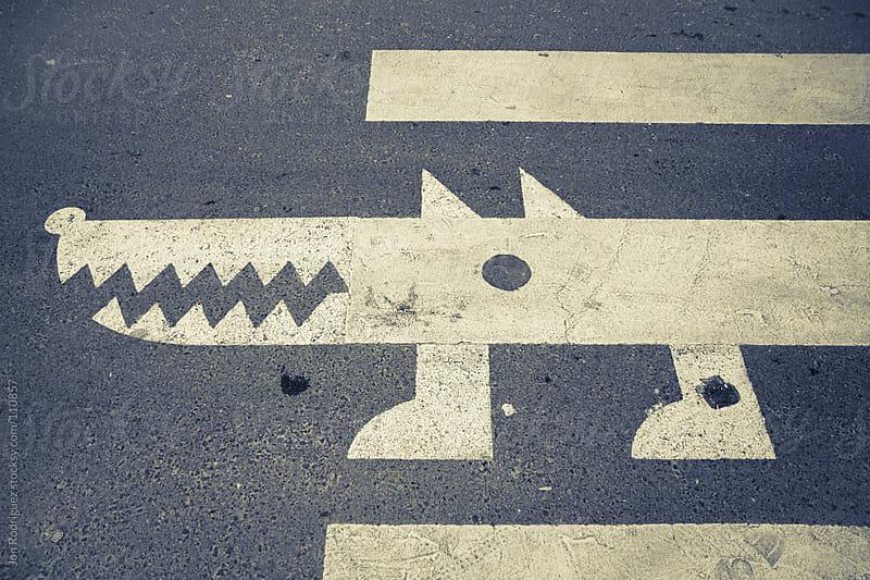 Zebra crossing by Jon Rodriguez for Stocksy United