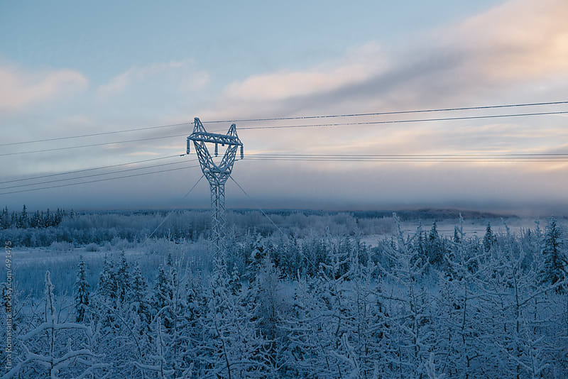 power line covered in frost on a cold winter day in Alaska by Tara Romasanta for Stocksy United