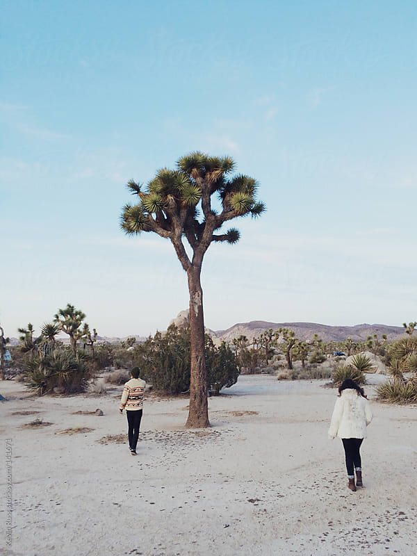 Man and Woman by a Joshua Tree by Kevin Russ for Stocksy United