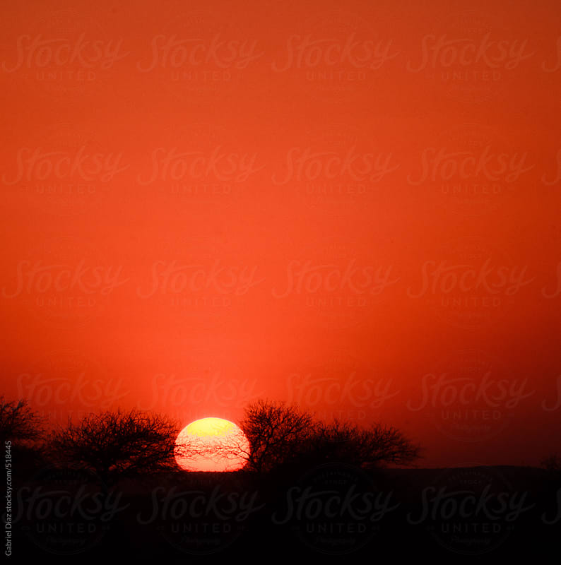 Sunset in the desert of Rajasthan. India by Gabriel Diaz for Stocksy United