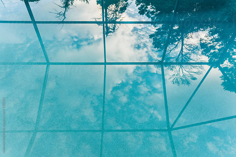 Sunrise Reflection in an Enclosed Pool by suzanne clements for Stocksy United