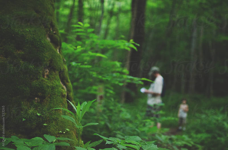Hiking at dusk in the forest by Ali Deck for Stocksy United