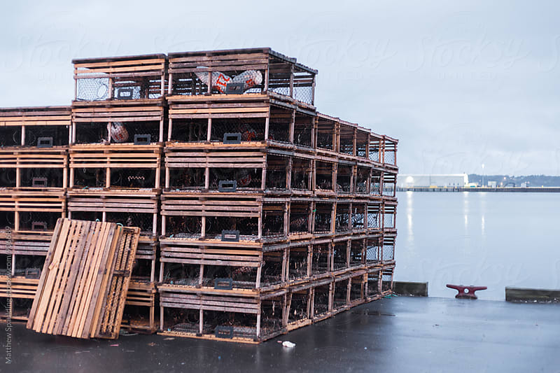 Stack of commercial lobster traps on dock in early morning by Matthew Spaulding for Stocksy United