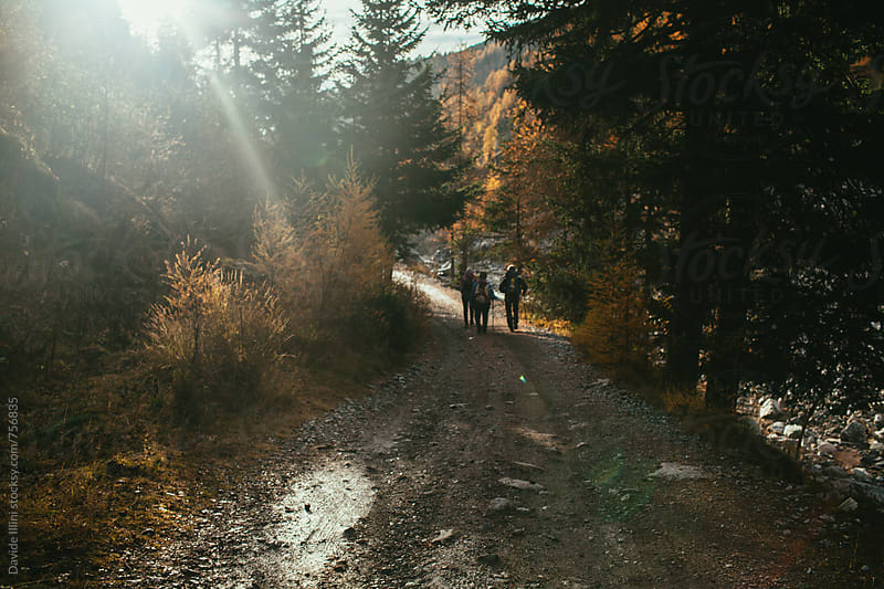 Friends hiking in the nature by Davide Illini for Stocksy United