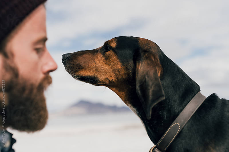 Dog Best Friend Face Off by Isaiah & Taylor Photography for Stocksy United