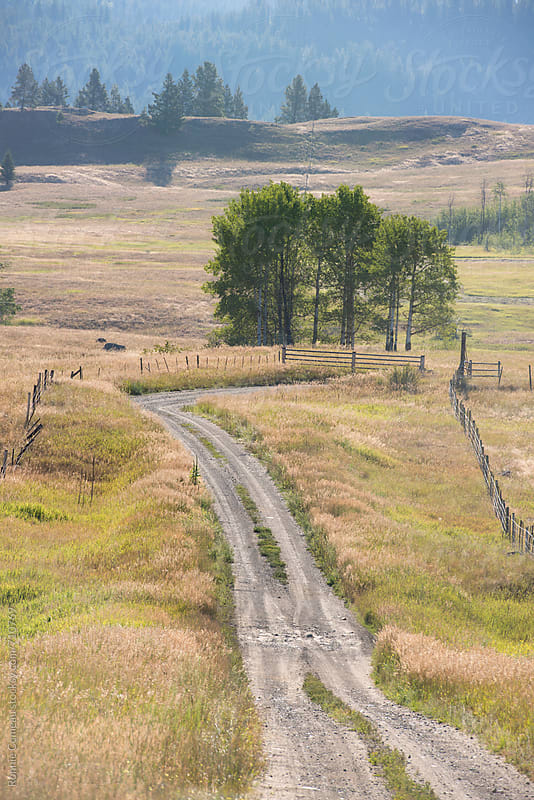 Country Road by Ronnie Comeau for Stocksy United