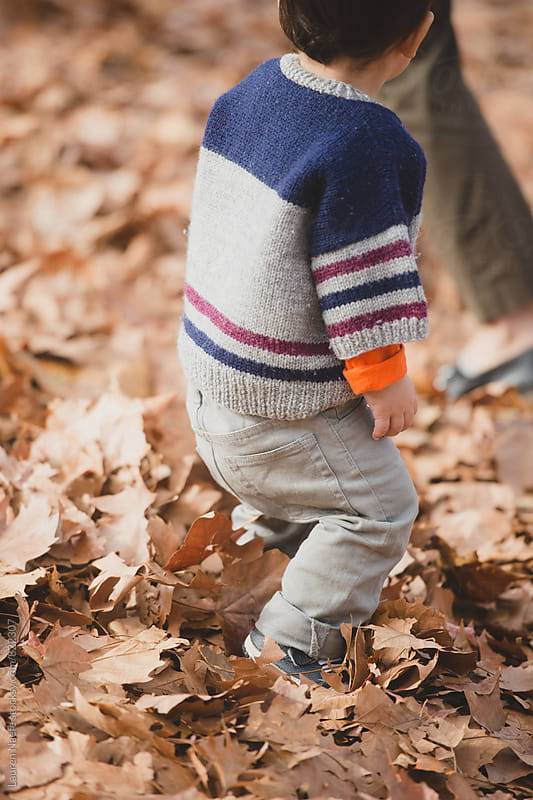 Little boy playing in fall leaves by Lauren Naefe for Stocksy United