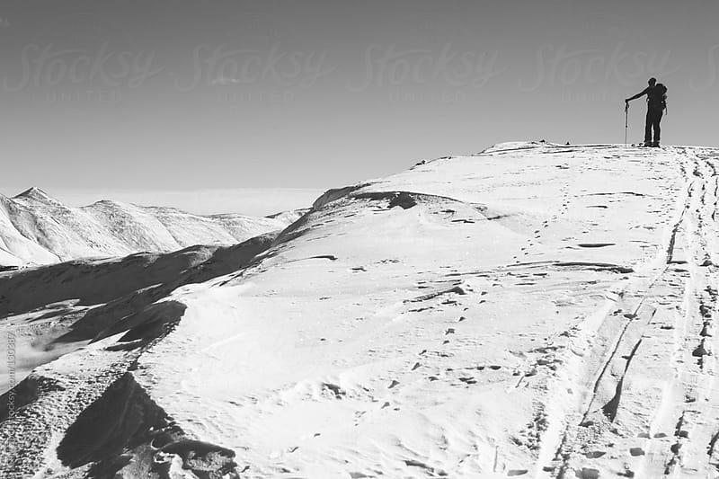 Ski Touring in Leadville, Colorado by Carl Zoch for Stocksy United