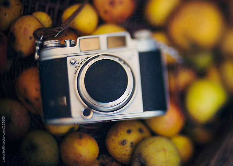 Harvesting organic apple and taking pics with retro reflex camera by Laura Stolfi for Stocksy United