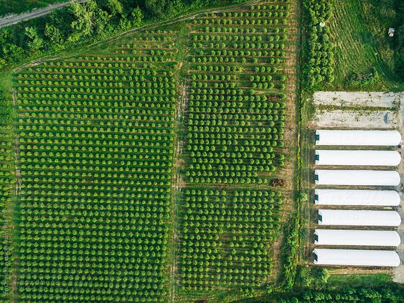 Overhead drone image of a farm by Jen Grantham for Stocksy United
