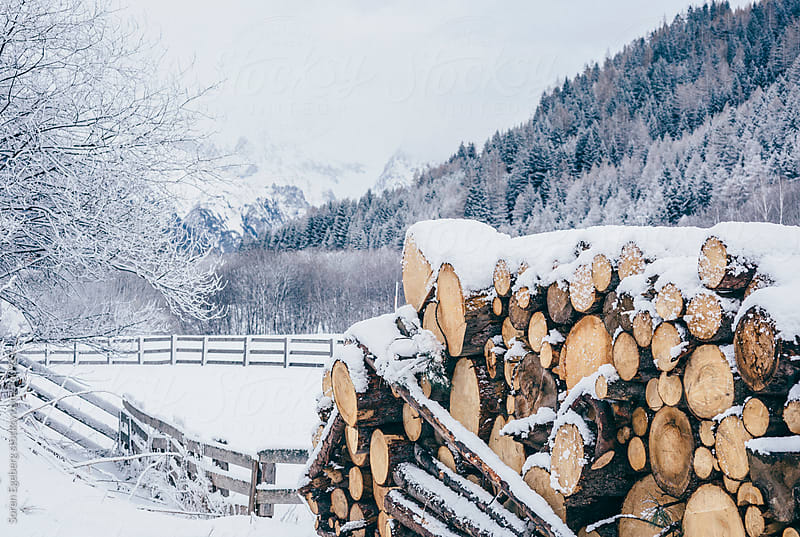 Pile of firewood covered in fresh snow by Soren Egeberg for Stocksy United