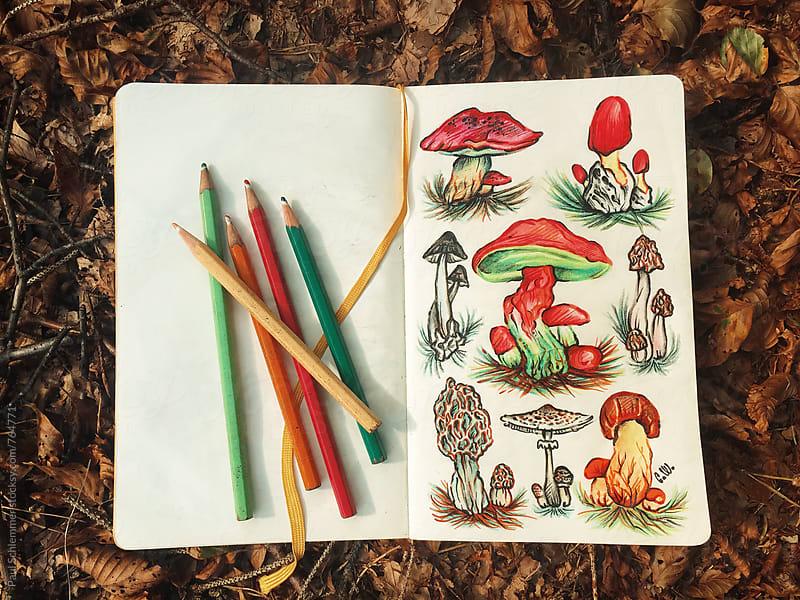 mushrooms by Paul Schlemmer for Stocksy United