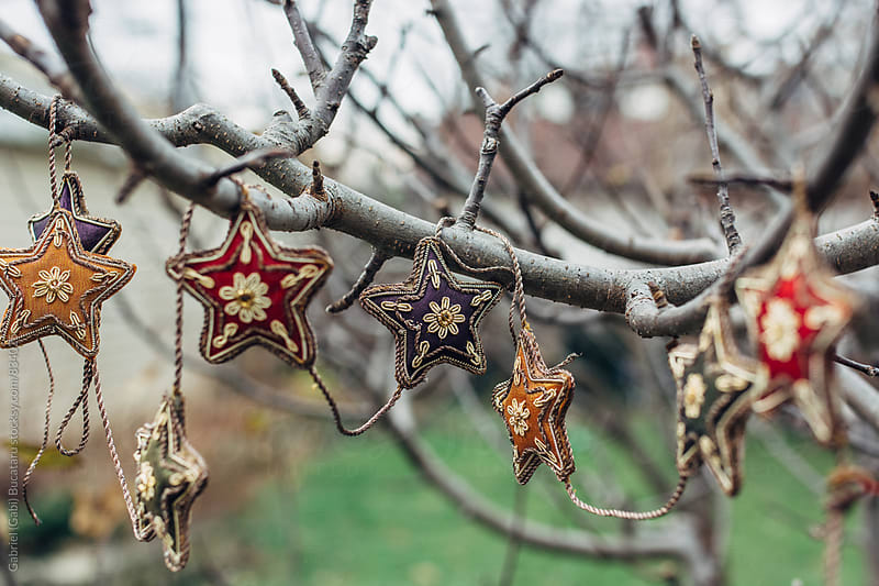 Colorful stars in a tree by Gabriel (Gabi) Bucataru for Stocksy United