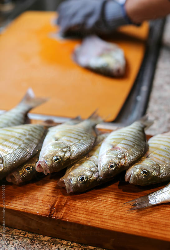 Filleting perch in the kitchen by Carolyn Lagattuta for Stocksy United