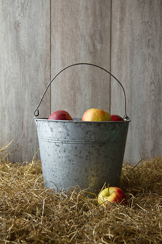 Apples in Metal Bucket by Kirsty Begg for Stocksy United