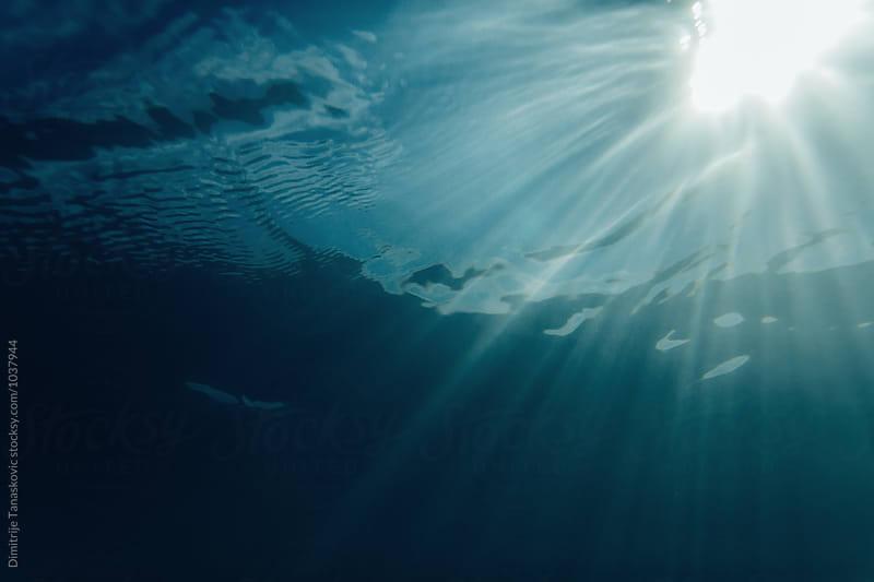 Underwater by Dimitrije Tanaskovic for Stocksy United