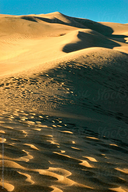 Sand Dunes by Ryan Dearth Photography for Stocksy United
