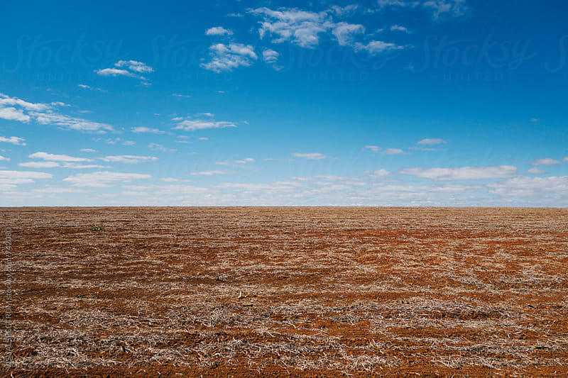 Barren Dry Countryside Background by VISUALSPECTRUM for Stocksy United