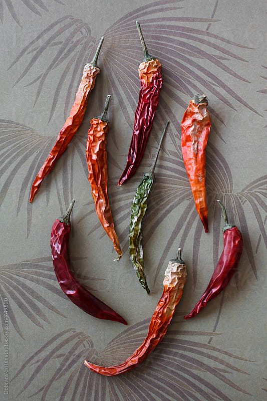 Dried Hot Chili by Dobránska Renáta for Stocksy United