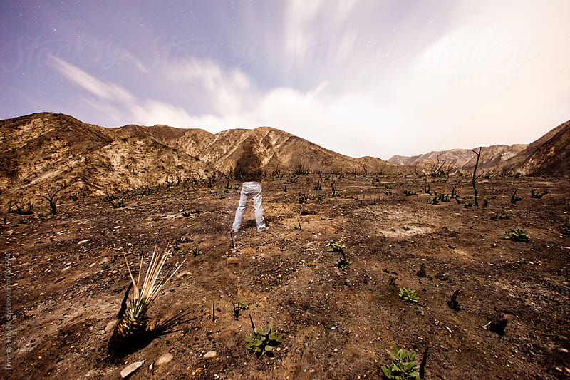 Man on mountain after forest fire by Thomas Hawk for Stocksy United