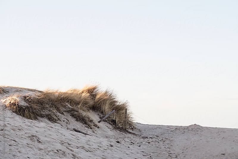 Dunes in evening light by Melanie Kintz for Stocksy United