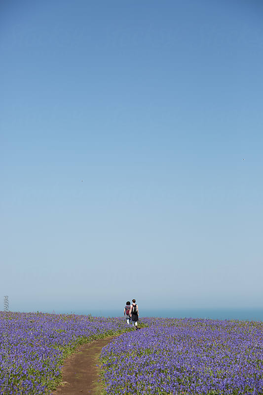 Two distant female hikers walking towards the sea through a carpet of Common Bluebells. by Helen Rushbrook for Stocksy United