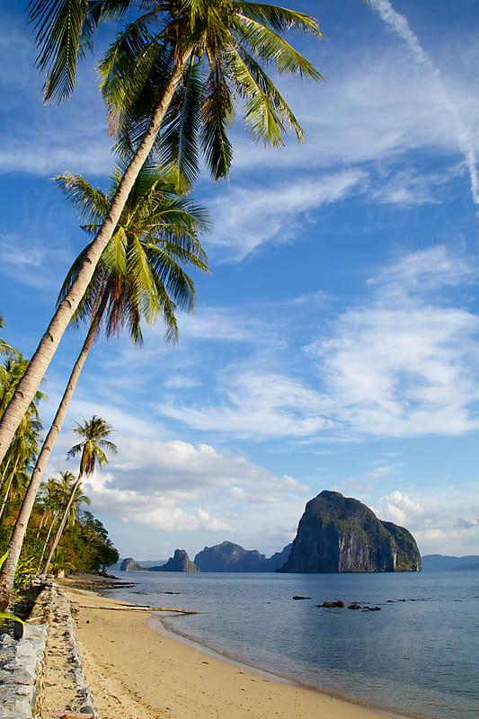 Leaning palm trees over a sandy beach, Las Cabanas Beach, Palawan Island, Philippines by Jaydene Chapman for Stocksy United