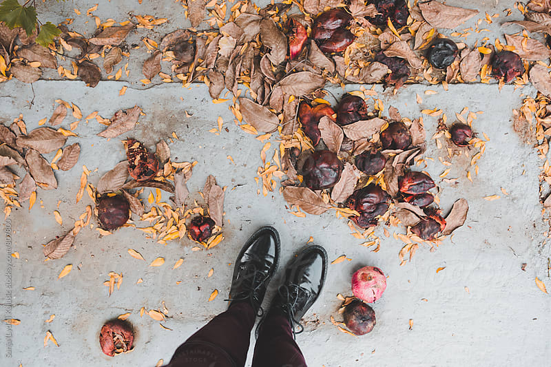 Pretty vintage retro shinny shoes standing in the middle of natural falling pomegranates by Sanja (Lydia) Kulusic for Stocksy United