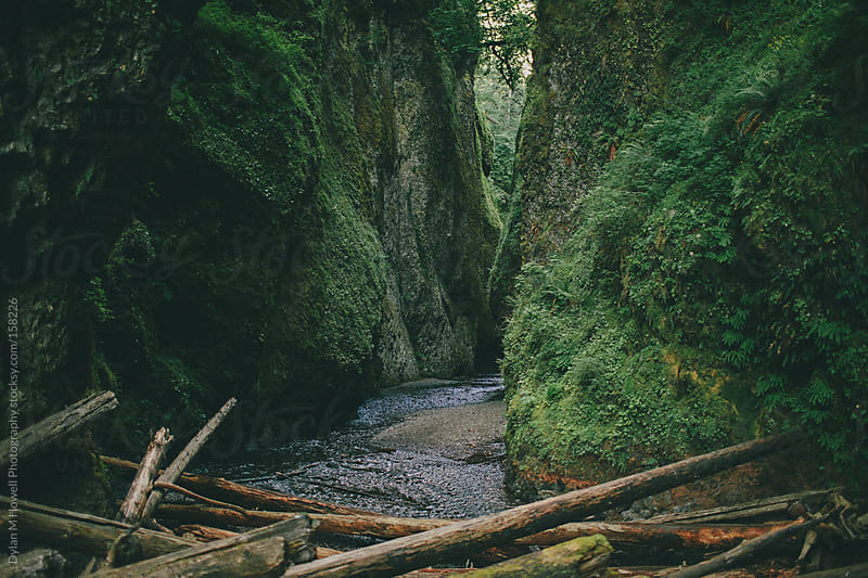 Oregon Landscape by Dylan M Howell Photography for Stocksy United