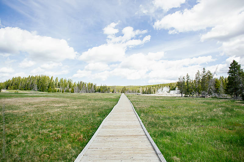 Wooden boardwalks on the geothermal areas of Yellowstone National Park by michela ravasio for Stocksy United