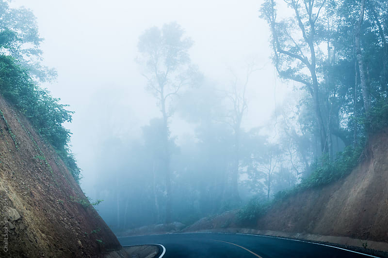 Road of fog by Chalit Saphaphak for Stocksy United