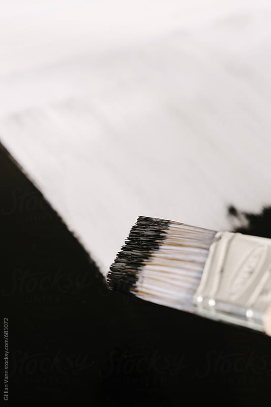 black  paint on a brush by Gillian Vann for Stocksy United