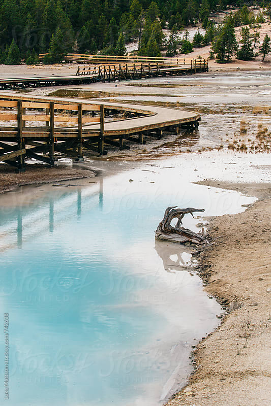 Boardwalk Winding Through Norris Geyser Basin And Hot Springs In Yellowstone National Park by Luke Mattson for Stocksy United